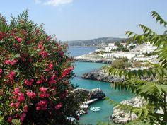 Castro porto vecchio