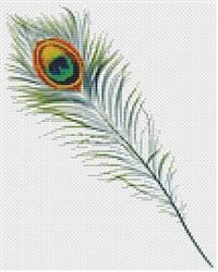 Peacock Feather (Mini Chart)