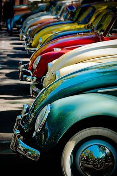 Vintage VW Bugs. (I drove a 1964 for awhile).