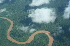 """Um estudo publicado, recentemente, pela revista britânica Nature revela que a bacia amazônica deixará de resfriar a atmosfera e se transformará em mais uma fonte de emissão de dióxido de carbono (CO2)com as consecutivas alterações climáticas ocorridas no planeta. A pesquisa, encabeçada por uma equipe equipe internacional de cientistas e liderada por Luciana Gatti, do...<br /><a class=""""more-link""""…"""