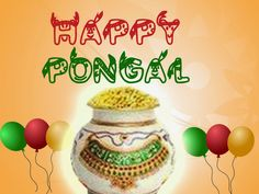 Pongal sms Pongal Greetings