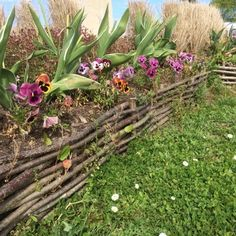 Cheap, creative and modern garden edging ideas for flowers beds and slopes from timber, wood, stone, curved or DIY lawn edging ideas for vegetables. Wooden Garden Edging, Yard Edging, Garden Borders, Garden Edging Ideas Cheap, Grass Edging, Landscaping With Rocks, Backyard Landscaping, Landscaping Ideas, Landscaping Borders