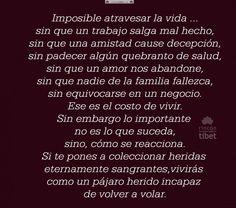 Imposible atravesar la vida ... sin que un trabajo ....
