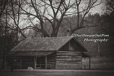 Cabin, House Styles, Photos, Photography, Home Decor, Pictures, Fotografie, Photograph, Cabins