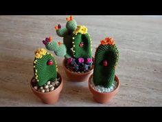 Cactus con Fiori arancio #amigurumi #cactus #uncinetto #crochet - YouTube Cactus Plants, Languages, Free Pattern, The Creator, Knowledge, English, Technology, Youtube, Crochet Cactus