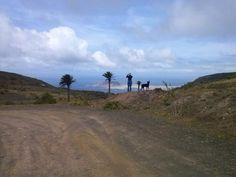 La vida es bella en Lanzarote
