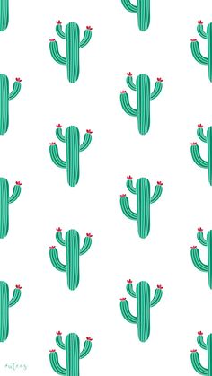 Cactus Wallpaper Design I Made by University Tees Design Team