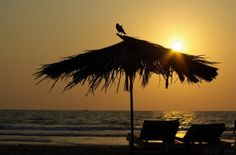 9 Reasons Why Goa Is The Best Place In The World - Yahoo News India