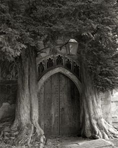Sentinels of St. Edwards by Beth Moon