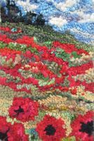 More Poppies by Deanne Fitzpatrick