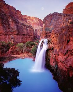 Havasu Falls, Arizona 1991 by Michael Fatali Arizona Waterfalls, Beautiful World, Beautiful Places, Travel Around The World, Around The Worlds, Landscape Photographers, Natural Wonders, Wonders Of The World, Pictures