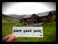 plant good seeds™ send us your address on our Facebook page and we will send you a Free sticker to post!