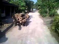 Unique vehicle - YouTube