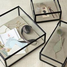10x glazen display