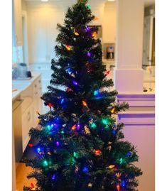 6ft Unlit Artificial Christmas Tree Alberta Spruce - Wondershop™ : Target Slim Artificial Christmas Trees, Spruce Christmas Tree, Christmas Tree Storage, Artificial Tree, Christmas Crafts, Christmas Skirt, Christmas Christmas, Balsam Fir, Food Storage Containers