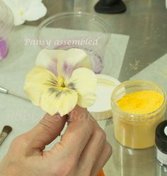 A complete how-to on a sugar pansy and leaf