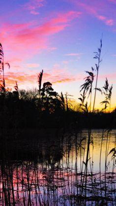 Purple, Sunset, Lake, Landscape, Dusk, Nature