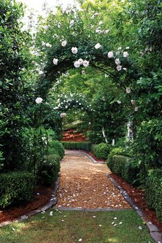 rose arch, gravel path