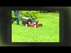 Weed Control Frisco TX   Call 972-992-5296