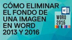 Cómo eliminar el fondo de cualquier imagen en Word 2013 y Word 2016