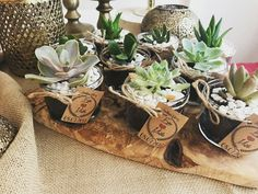 Engagement succulend gift #engagement #bursa #gelin #damat #parti #babyshower #succulend #sukulent #hediyelik #gift #bride #groom