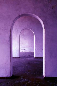 Purple portals