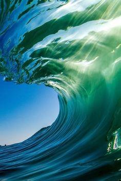 Динамика-4.   Практически живое воплощение динамики чистой воды.