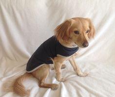 Capa impermeable reversible azul marino para perro, capa de lluvia, chaqueta. Diseño exclusivo de Mucka Pets. de MuckaPets en Etsy