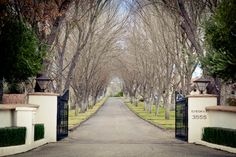 Morais Vineyards Bealeton Va Officiated By No Ordinary Ordained Photo John South Photography Weddings I Ve Pinterest Photos