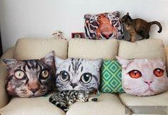 Для любителей котов