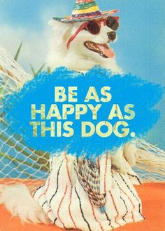 This pup's having a #SensatioNail day!   #Summer #Dogs #BeHappy