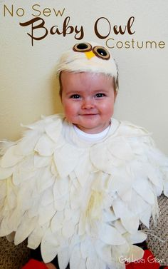 No Sew Baby Owl Costume Girl Loves Glam: No Sew Baby Owl Costume Kristen- this should be Jacob's Halloween costume this year! Baby Owl Costumes, Homemade Halloween Costumes, Diy Halloween Costumes For Kids, Baby Halloween Costumes, Halloween 2017, Owl Costume Kids, Costumes Kids, Hedwig Costume, Bird Costume
