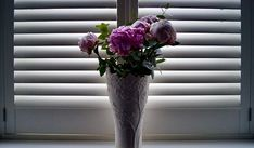 White Shutters, Interior Window Shutters, Wooden Shutters, Hampton Bay Ceiling Fan, Vinyl Blinds, Paper Light, Calming Colors, Hanging Jewelry