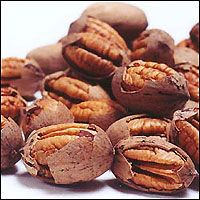 Texas designated the pecan as the official state health nut in 2001. Texas is the largest producer of native pecans, and has also named the Pecan as the State Tree. There are over 1,000 varieties of pecans - many are named for Native American Indian tribes such as Cheyenne, Mohawk, Sioux, Choctaw and Shawnee. The pecan, because of its pure American heritage, is honored by having the month of April declared as National Pecan Month. Astronauts took pecans to the moon on two Apollo space…