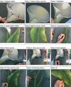 How to paint calla lilies, using acrylic paints, by Sue Pruett. This is an online class with 90 days to complete it.