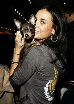 Demi Moore and her black chihuahua Vida Blue.