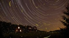 Fireflies and star trails