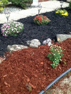 1000 images about colored mulch ideas on pinterest for Different color rocks for landscaping