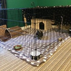 She gets a free run when we're in! Diy Bunny Cage, Bunny Cages, Rabbit Cages, Rabbit Toys, Pet Rabbit, Indoor Rabbit House, Indoor Rabbit Cage, Rabbit Habitat, Pet Bunny Rabbits