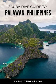Palawan is a symbol of bounty which also applies to its underwater ecosystem. Since most of its dive sites are considered as marine sanctuaries you can expect marine life to flourish. Regions Of The Philippines, Philippines Travel, Travel Guides, Travel Tips, Travel Goals, Travel Photos, Scuba Diving, Cave Diving, Asia Travel