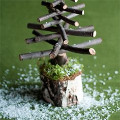 Twiggy Christmas Trees