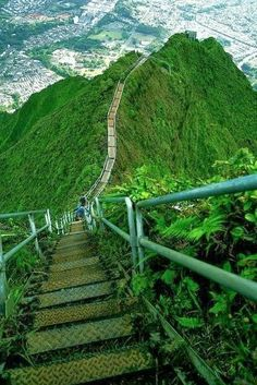 Stairway to Heaven - Haʻikū Ladder | See More Pics: