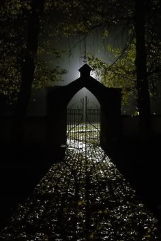 Spooky in the night through the gate and into the light. Samhain, Enchanted Wood, Arte Obscura, Nocturne, Dark Art, Moonlight, Gates, Scary, Art Photography