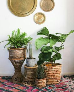 You might be wondering what's happening here? Well I scored the best wicker treasures this week so naturally I set them all up in my living room and took a picture!!! We will have these, and lots more wicker treasures at our upcoming spring shows! #fleastyle #jungalowstyle #finditstyleit / Magic Garden <3