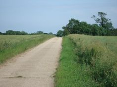 Walks And Walking Hertfordshire Walks Buntingford Walking Route Beauchamps   http://www.walksandwalking.com/2012/06/walks-and-walking-hertfordshire-walks-buntingford-walking-route/