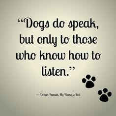 Even when I am trying to sleep. #dogquotes #doggies #dogsarelife