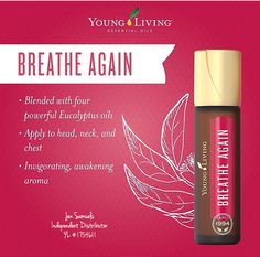 Essential oil blend from Young Living. Includes 4 powerful eucalyptus oils in a convenient roll on. Essential Oils For Colds, Essential Oils Guide, Essential Oil Perfume, Young Living Essential Oils, Essential Oil Blends, Young Living Breathe Again, Massage, Yl Oils, Eucalyptus Oil