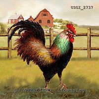 Hen Chicken, Chicken Art, Rooster Cross Stitch, Chickens And Roosters, Simple Pictures, Hens, Animals And Pets, Still Life, Paintings