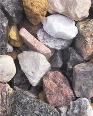 Neighborhood Rocks: Names for All Our Rocks...for bear elective on nature crafts