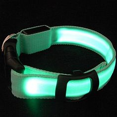 Fashion Nylon Pet LED Dog Collar Night Safety Dog Harness LED Flashing Glow Pet Supplies Dog Cat Collar -- Click image for more details.Note:It is affiliate link to Amazon. #bestoftheday